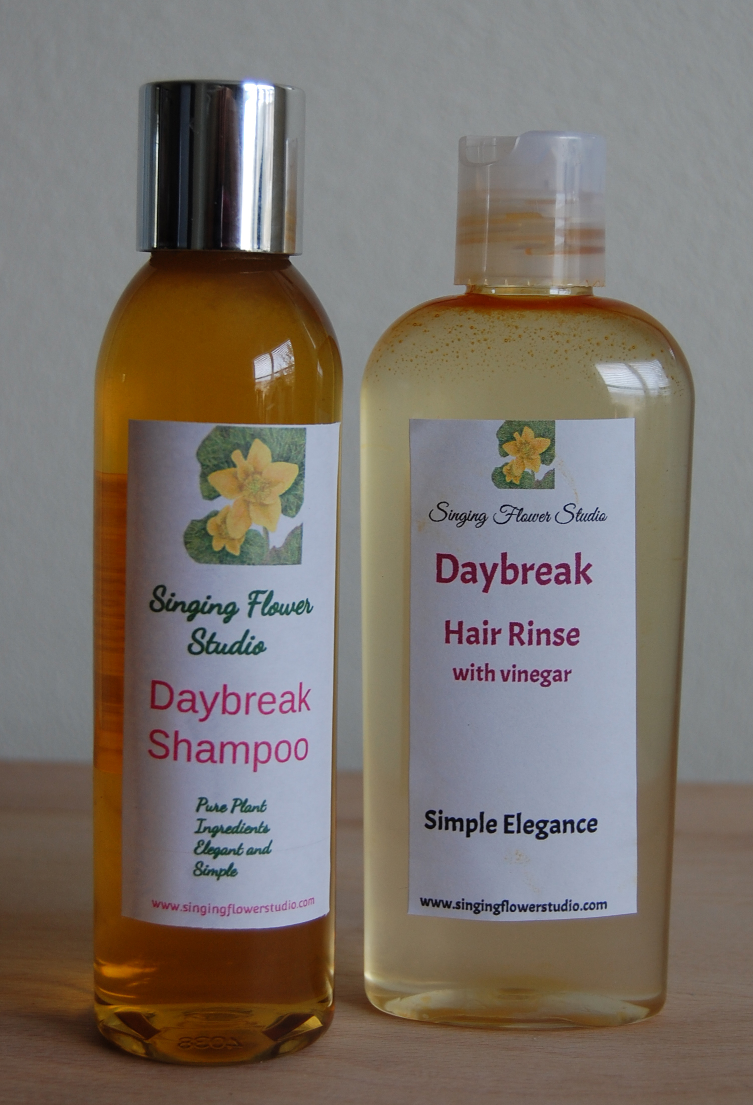 Daybreak Shampoo and Rinse with Vinegar